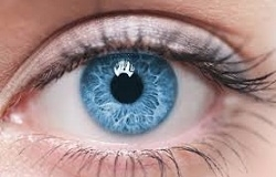 Vision Supplements May Put Your Eyes At Risk